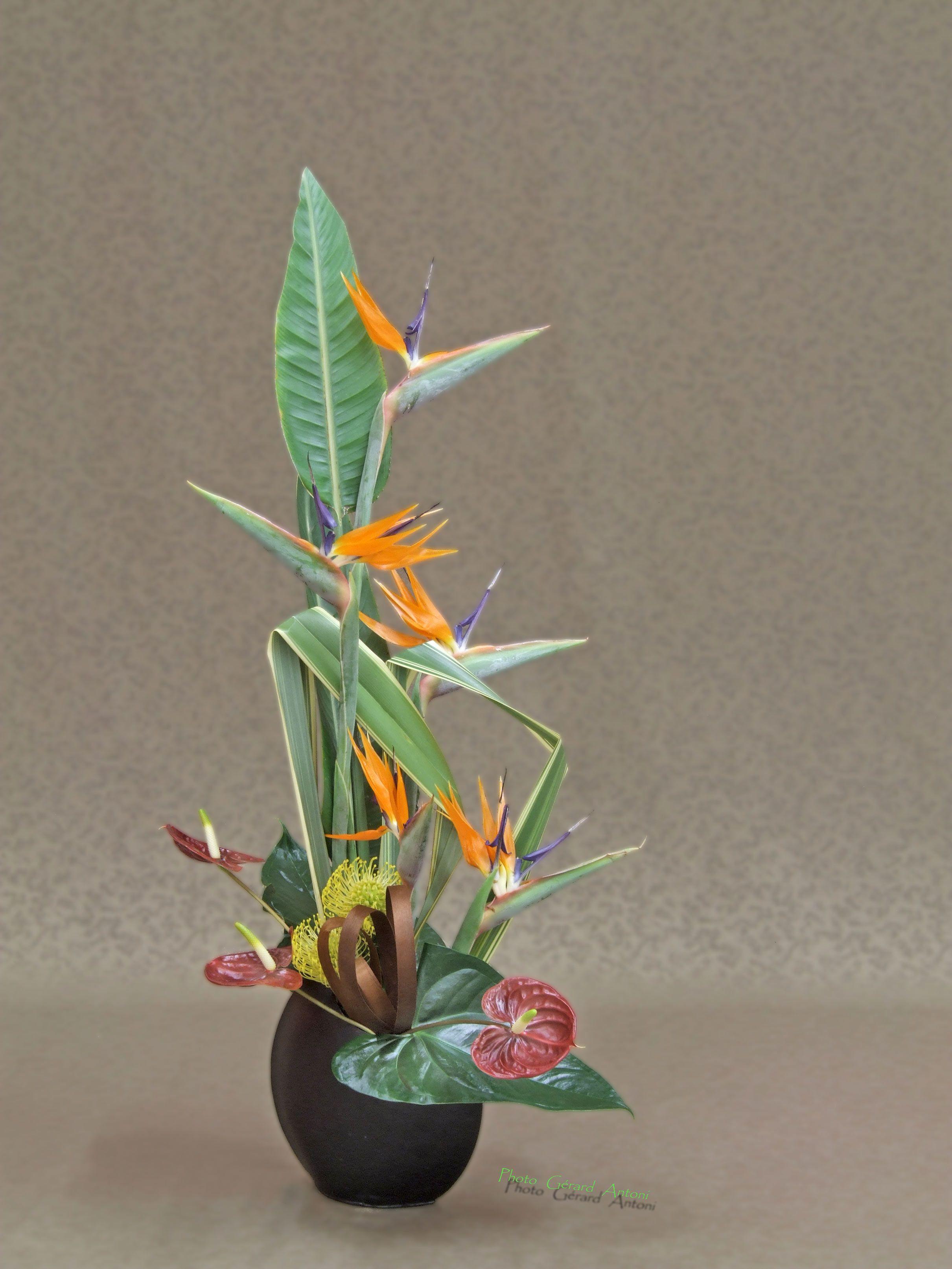 art floral de montrond le ch teau page 8. Black Bedroom Furniture Sets. Home Design Ideas
